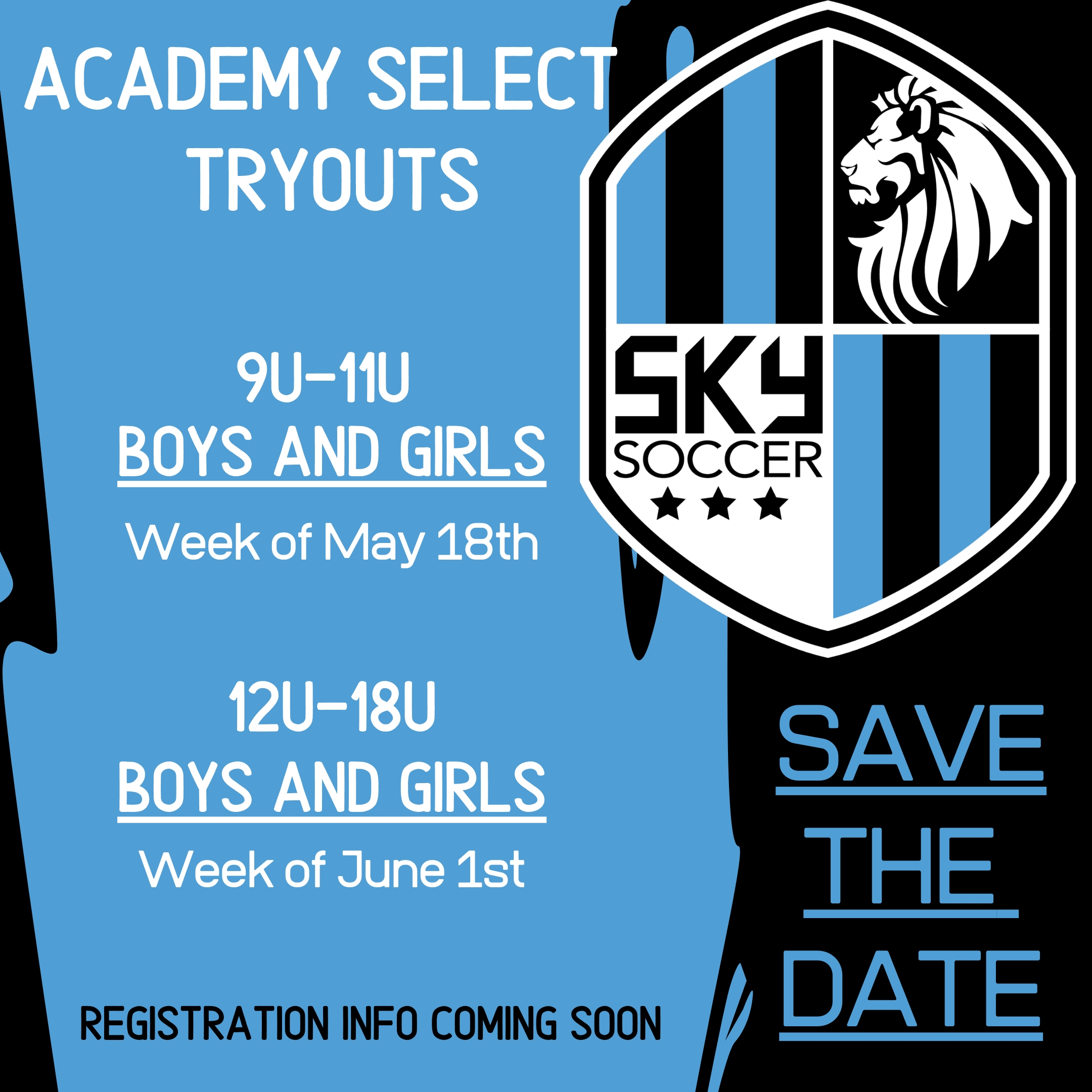 2020-2021 Tryout Information